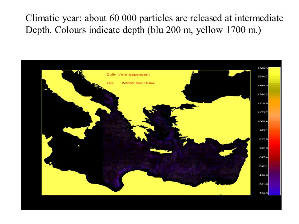 Climatic year: about 60 000 particles are released at intermediate Depth. Colours indicate depth (blu 200 m, yellow 1700 m.)