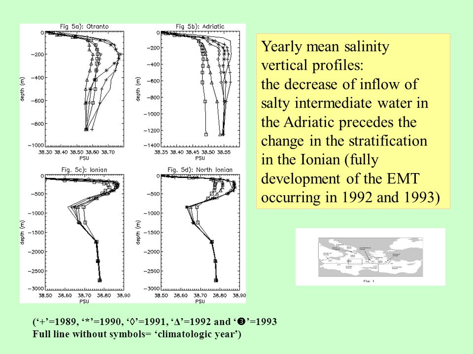 Density vertical section at 35° N, yearly mean values 'climatologic' year 1993 The general mechanism of the transient is reproduced
