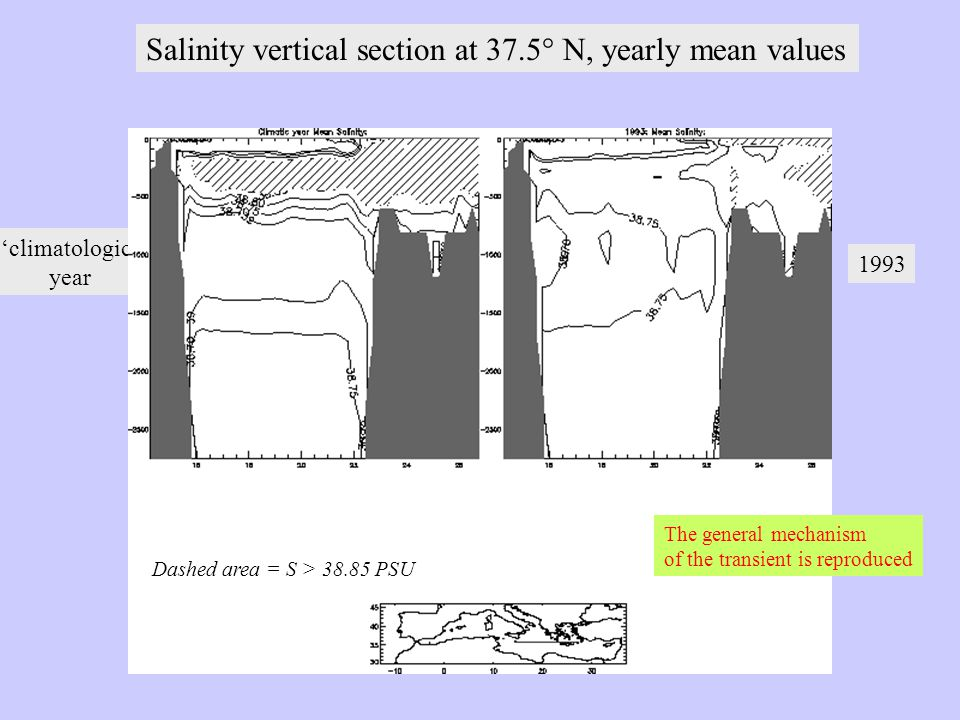Salinity vertical section at 37.5° N, yearly mean values 'climatologic' year 1993 Dashed area = S > 38.85 PSU The general mechanism of the transient is reproduced