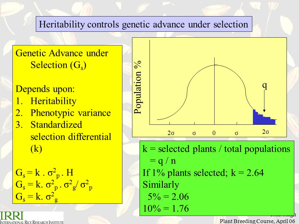 R.K.Singh Plant Breeding Course, April 06 Genetic Advance under Selection (G s ) Depends upon: 1.Heritability 2.Phenotypic variance 3.Standardized selection differential (k) G s = k.