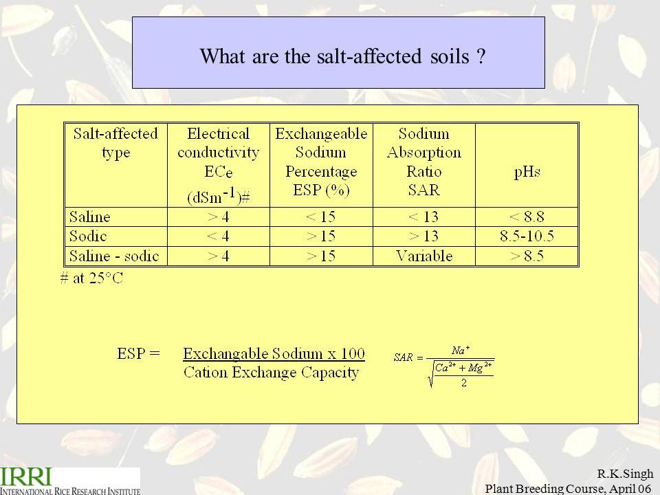 R.K.Singh Plant Breeding Course, April 06 What are the salt-affected soils