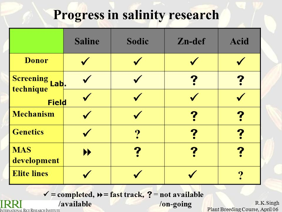 R.K.Singh Plant Breeding Course, April 06 Progress in salinity research = completed,  = fast track,  = not available /available /on-going Saline Sodic Zn-d ef Acid Donor Screening technique   Mechanism   Genetics .