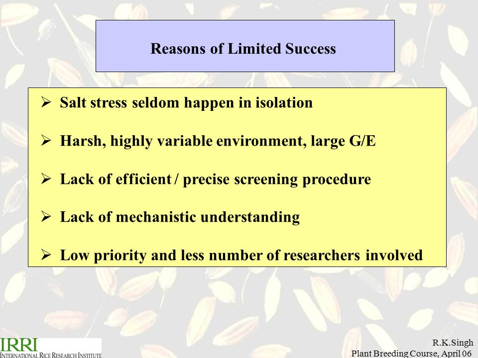 R.K.Singh Plant Breeding Course, April 06 Reasons of Limited Success  Salt stress seldom happen in isolation  Harsh, highly variable environment, large G/E  Lack of efficient / precise screening procedure  Lack of mechanistic understanding  Low priority and less number of researchers involved