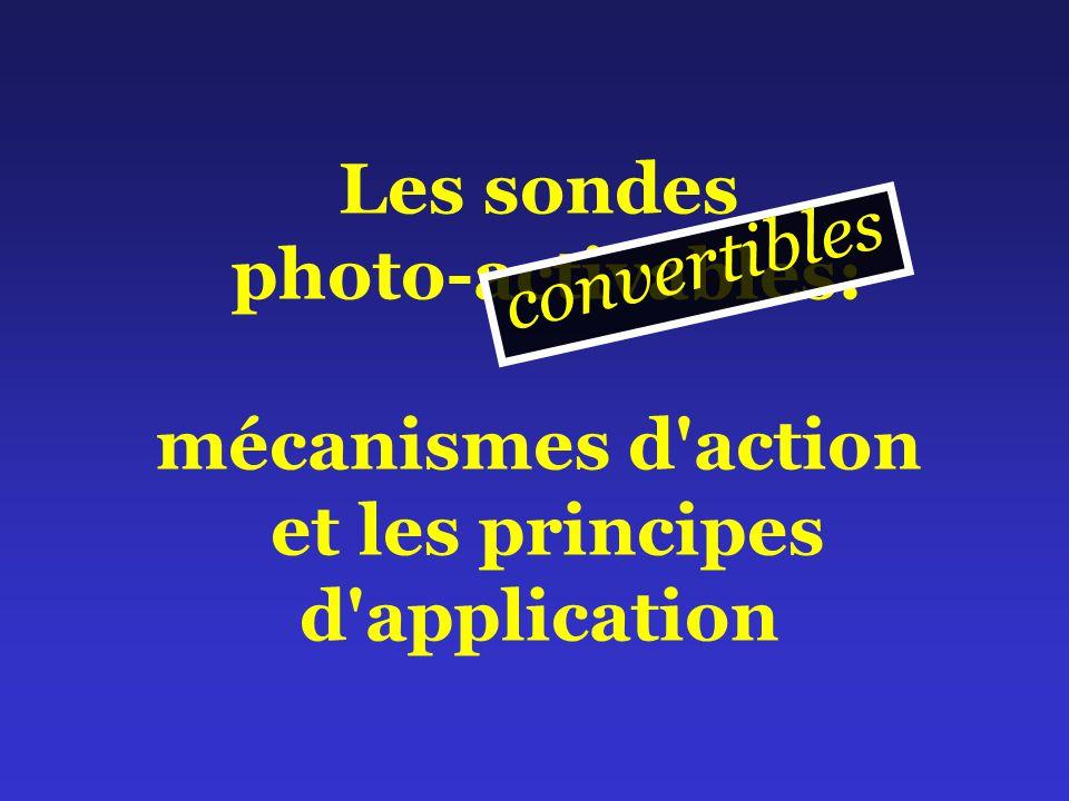 Les sondes photo-activables: mécanismes d action et les principes d application c o n v e r t i b l e s