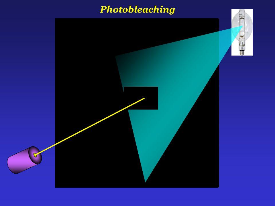 Photobleaching