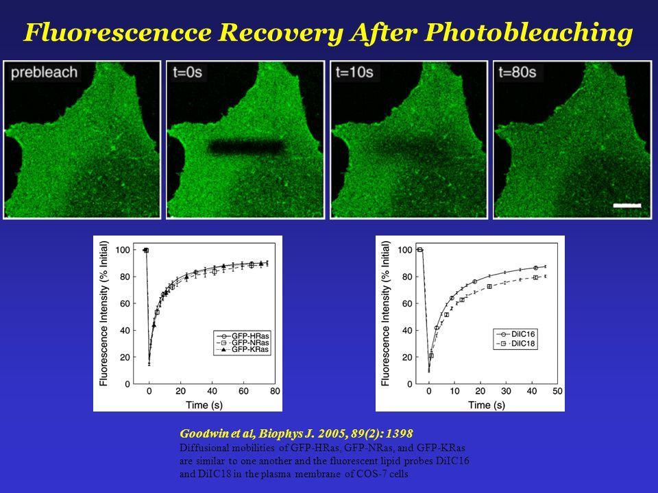 Goodwin et al, Biophys J.