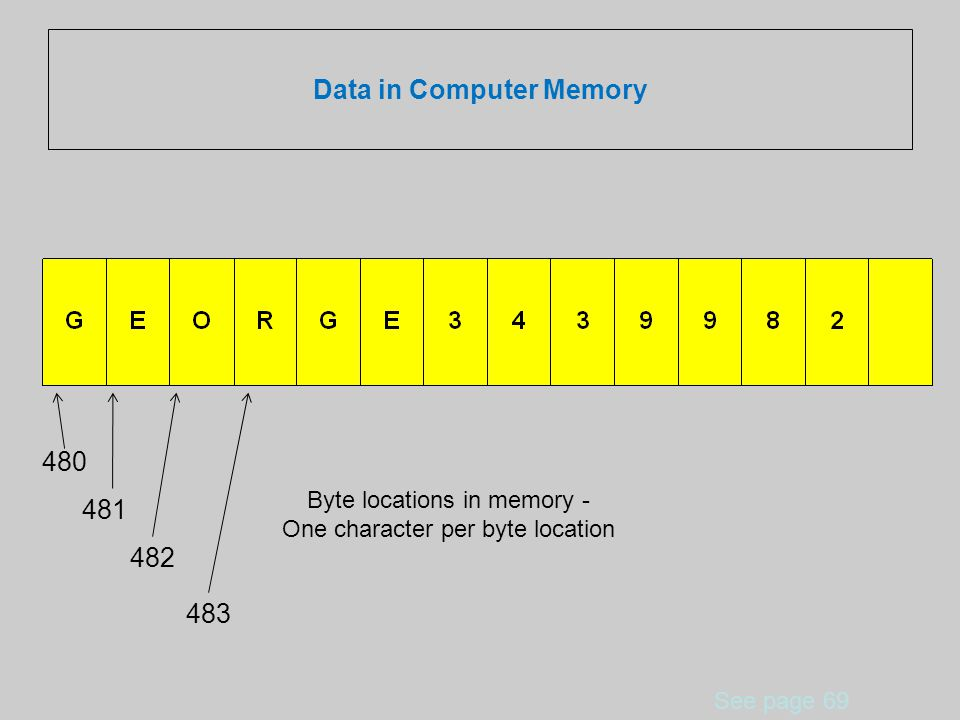 Data in Computer Memory See page 69 480 481 482 Byte locations in memory - One character per byte location 483