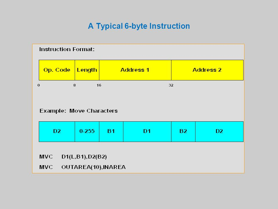 A Typical 6-byte Instruction
