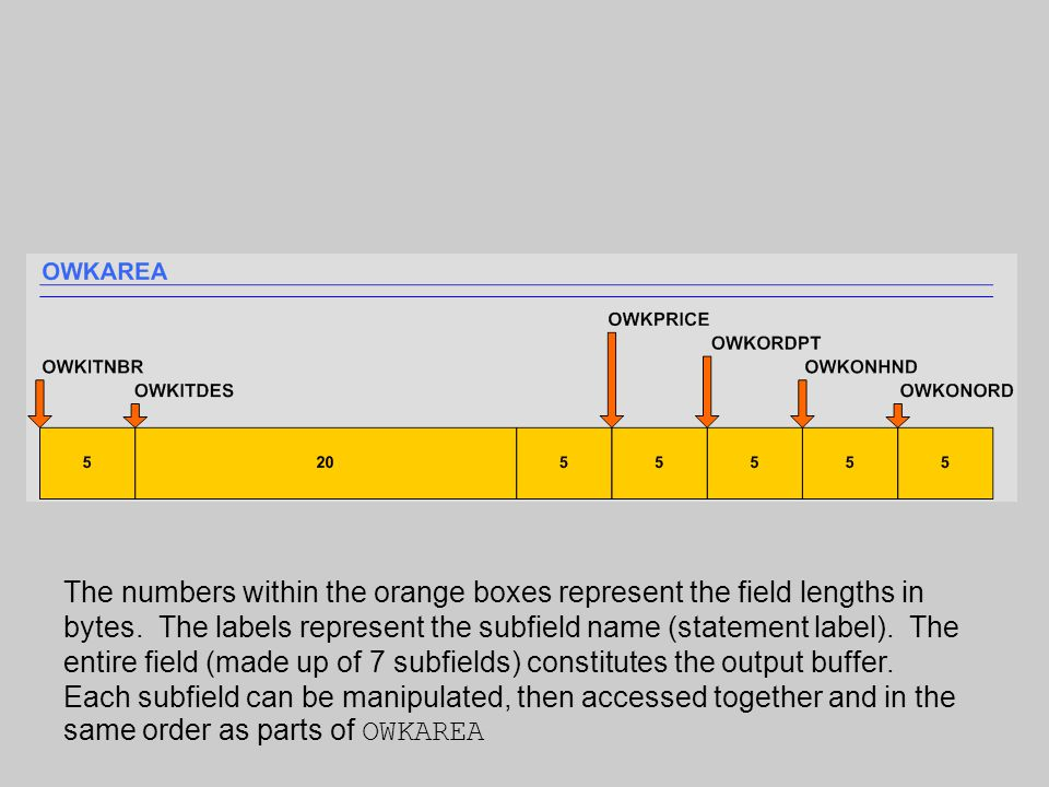 The numbers within the orange boxes represent the field lengths in bytes.