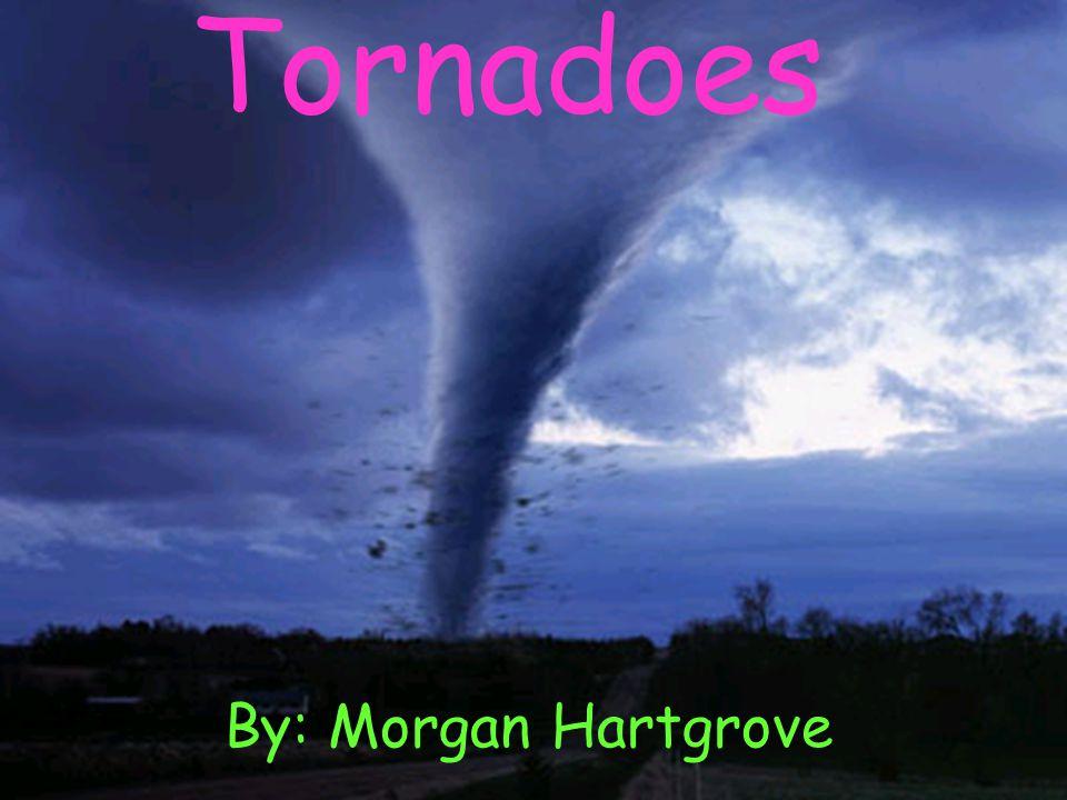 Tornado's Tornadoes By: Morgan Hartgrove