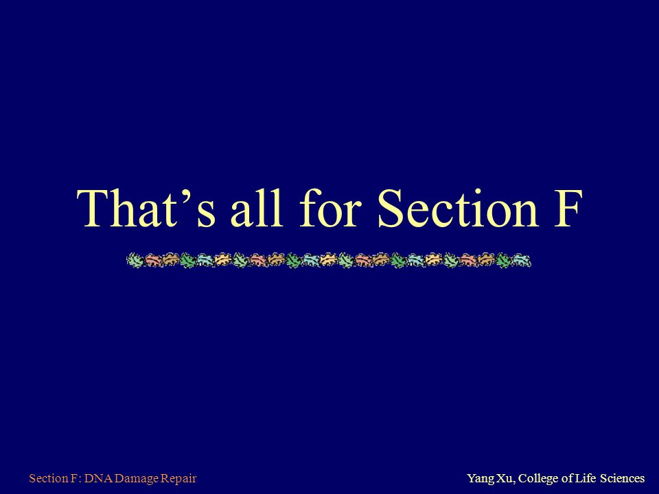 Section F: DNA Damage RepairYang Xu, College of Life Sciences That's all for Section F