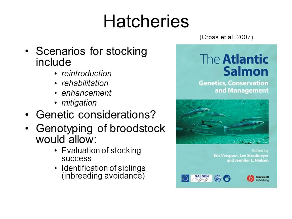 Hatcheries Scenarios for stocking include reintroduction rehabilitation enhancement mitigation Genetic considerations.