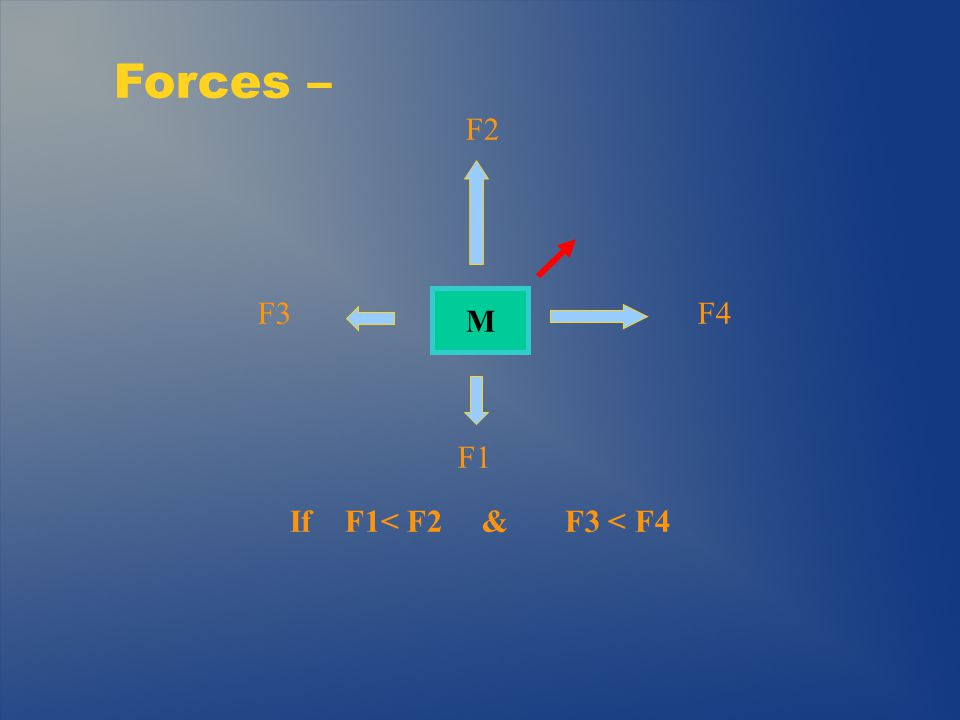 Practical Example: Static Model F = mass x a (gravity) = Weight F/2