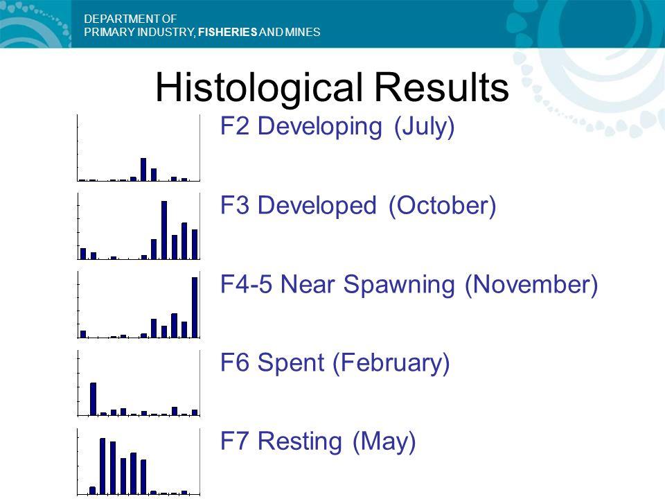 DEPARTMENT OF PRIMARY INDUSTRY, FISHERIES AND MINES F2 Developing (July) F3 Developed (October) F6 Spent (February) F7 Resting (May) F4-5 Near Spawnin