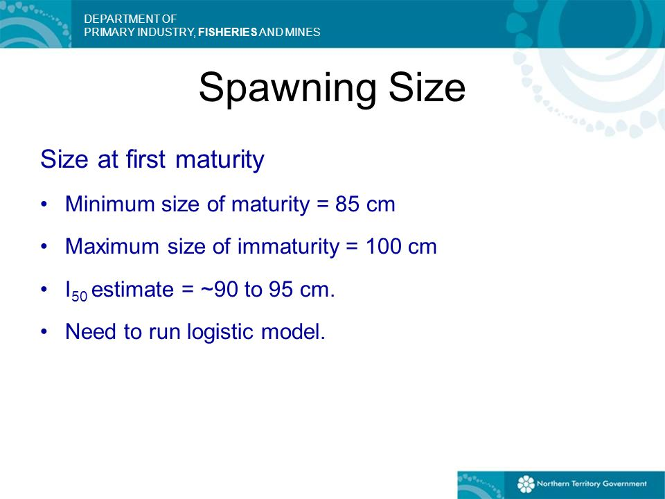 DEPARTMENT OF PRIMARY INDUSTRY, FISHERIES AND MINES Spawning Size Size at first maturity Minimum size of maturity = 85 cm Maximum size of immaturity =