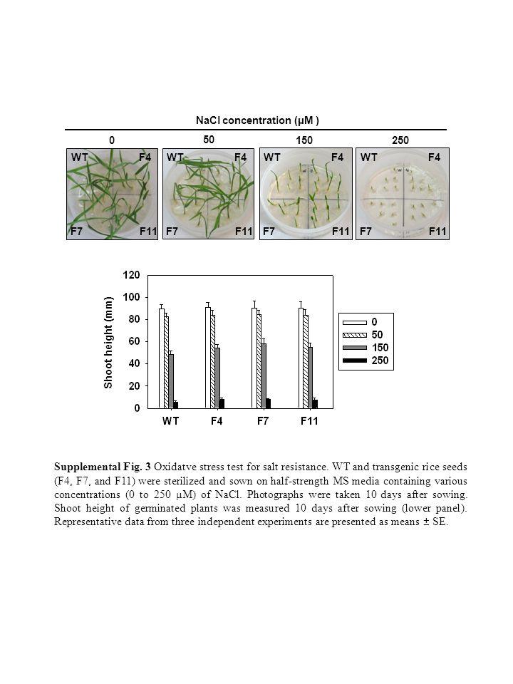 0150 250 50 Supplemental Fig. 3 Oxidatve stress test for salt resistance.