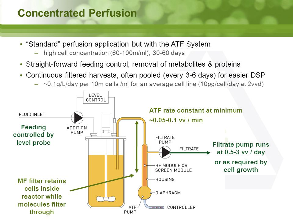 Concentrated Perfusion Standard perfusion application but with the ATF System –high cell concentration (60-100m/ml), 30-60 days Straight-forward feeding control, removal of metabolites & proteins Continuous filtered harvests, often pooled (every 3-6 days) for easier DSP –~0.1g/L/day per 10m cells /ml for an average cell line (10pg/cell/day at 2vvd) MF filter retains cells inside reactor while molecules filter through Filtrate pump runs at 0.5-3 vv / day or as required by cell growth ATF rate constant at minimum ~0.05-0.1 vv / min Feeding controlled by level probe