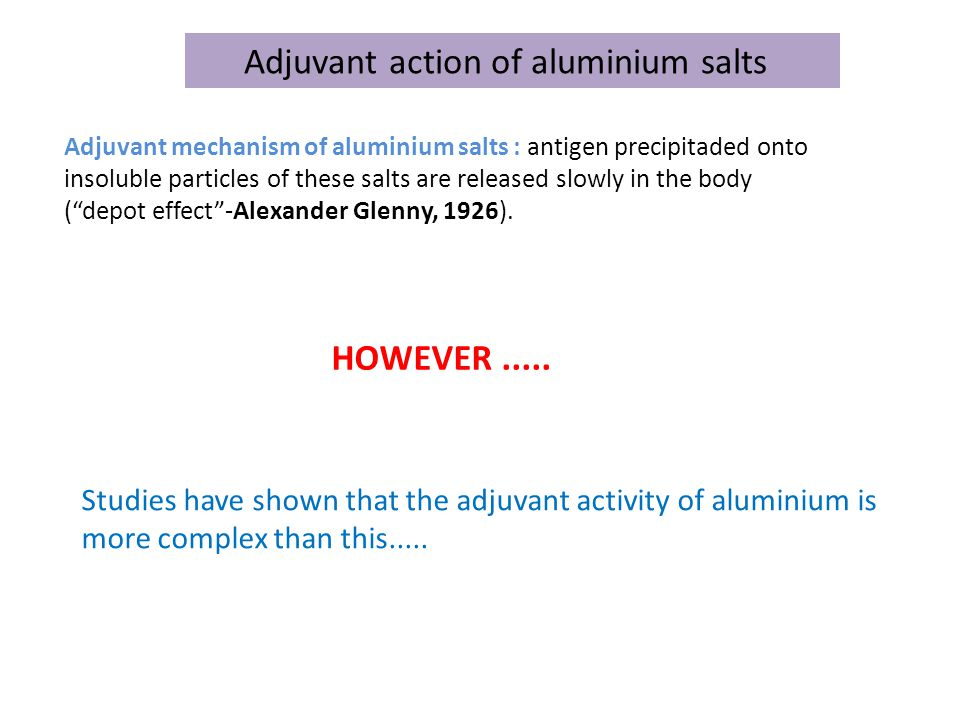 Adjuvant action of aluminium salts Adjuvant mechanism of aluminium salts : antigen precipitaded onto insoluble particles of these salts are released slowly in the body ( depot effect -Alexander Glenny, 1926).