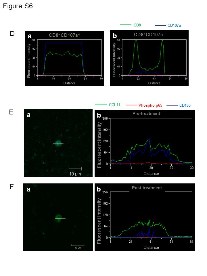 Fluorescent Intensity Post-treatment Figure S6 D Fluorescent Intensity Pre-treatment E CD8 + CD107a - CD8 + CD107a + F ba a a b b Fluorescent Intensity CD163 Phospho-p65 CD107a