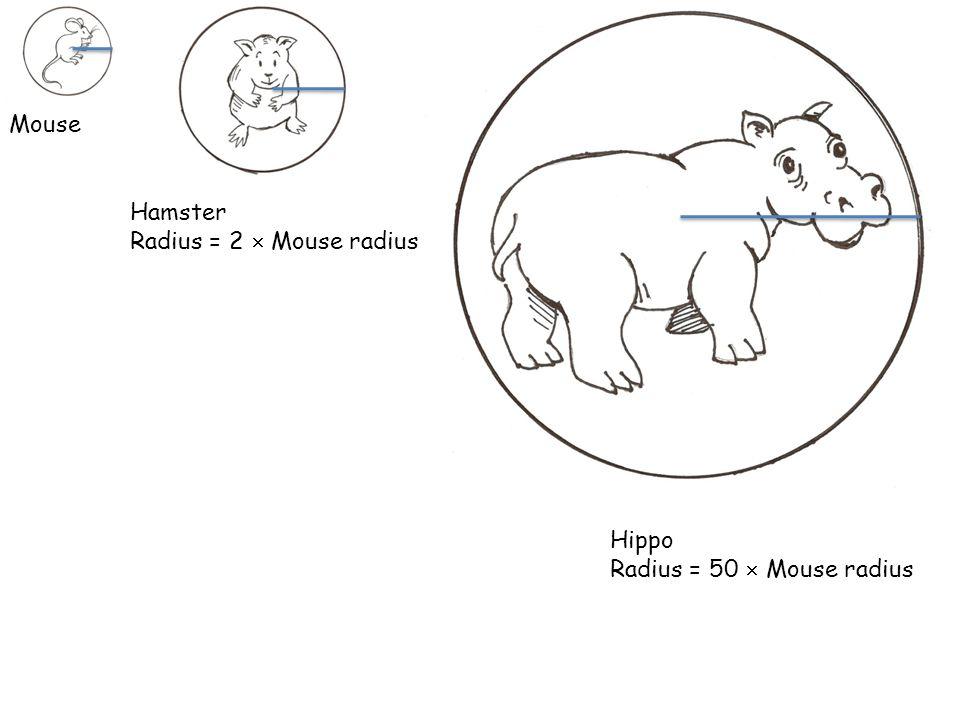 Mouse Hamster Radius = 2  Mouse radius Hippo Radius = 50  Mouse radius
