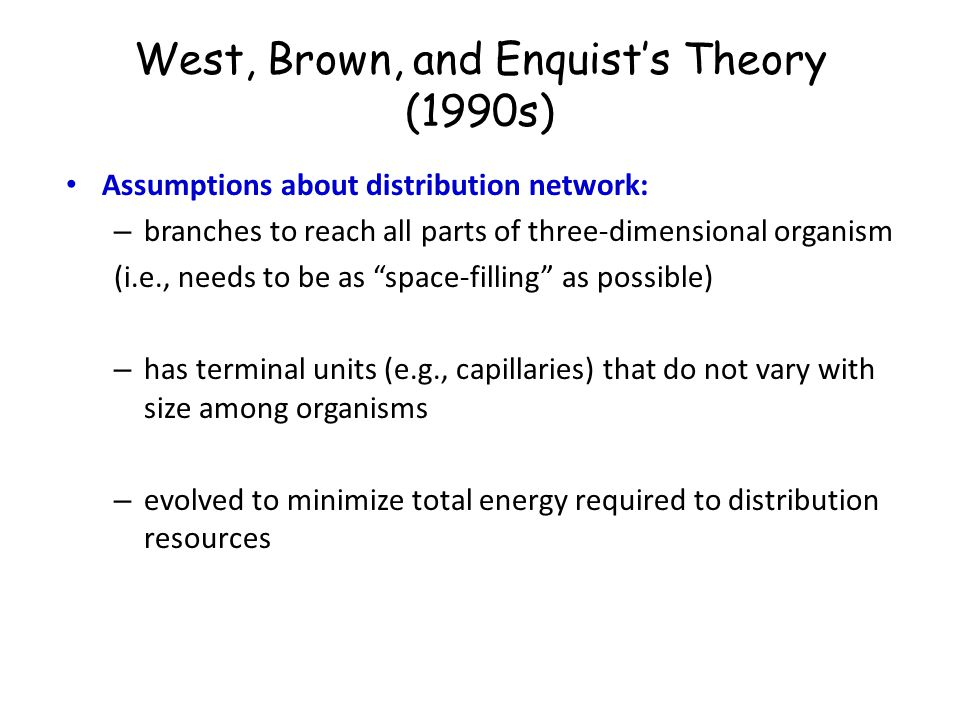 West, Brown, and Enquist's Theory (1990s) Assumptions about distribution network: – branches to reach all parts of three-dimensional organism (i.e., n