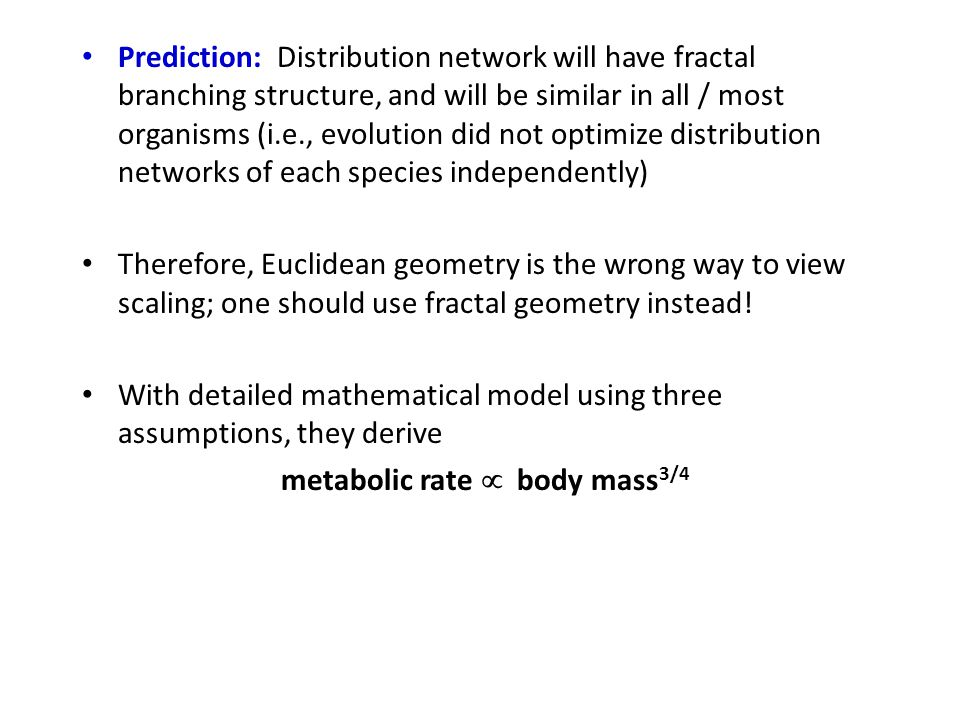 Prediction: Distribution network will have fractal branching structure, and will be similar in all / most organisms (i.e., evolution did not optimize