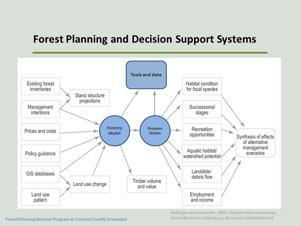 Forest Planning and Decision Support Systems Forest Planning Seminar Program at Forestry Faculty in Istanbul Bettinger and Lennette.