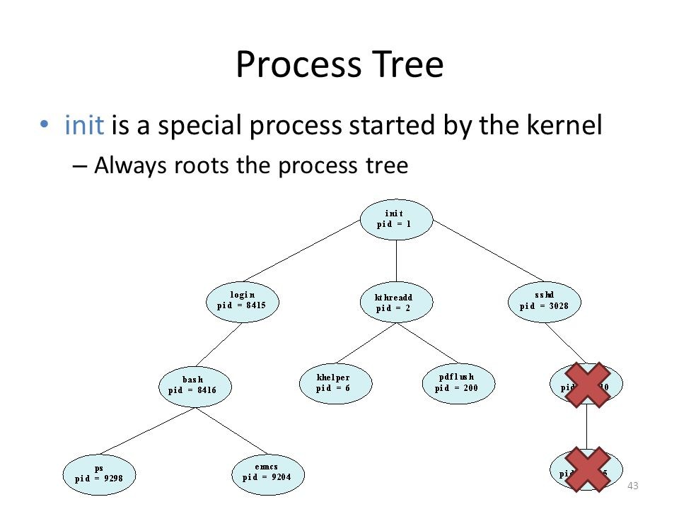 Process Tree init is a special process started by the kernel – Always roots the process tree 43