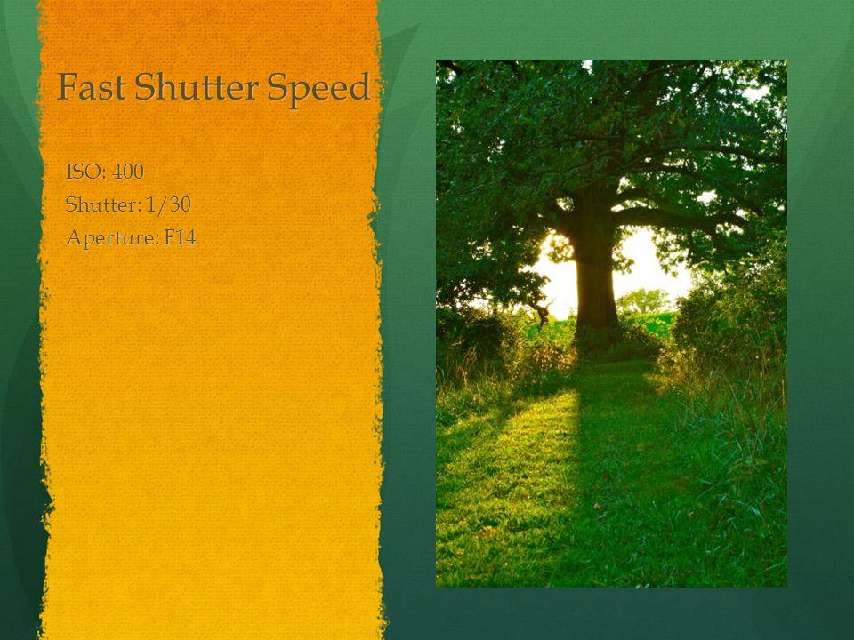 Fast Shutter Speed ISO: 400 Shutter: 1/30 Aperture: F14