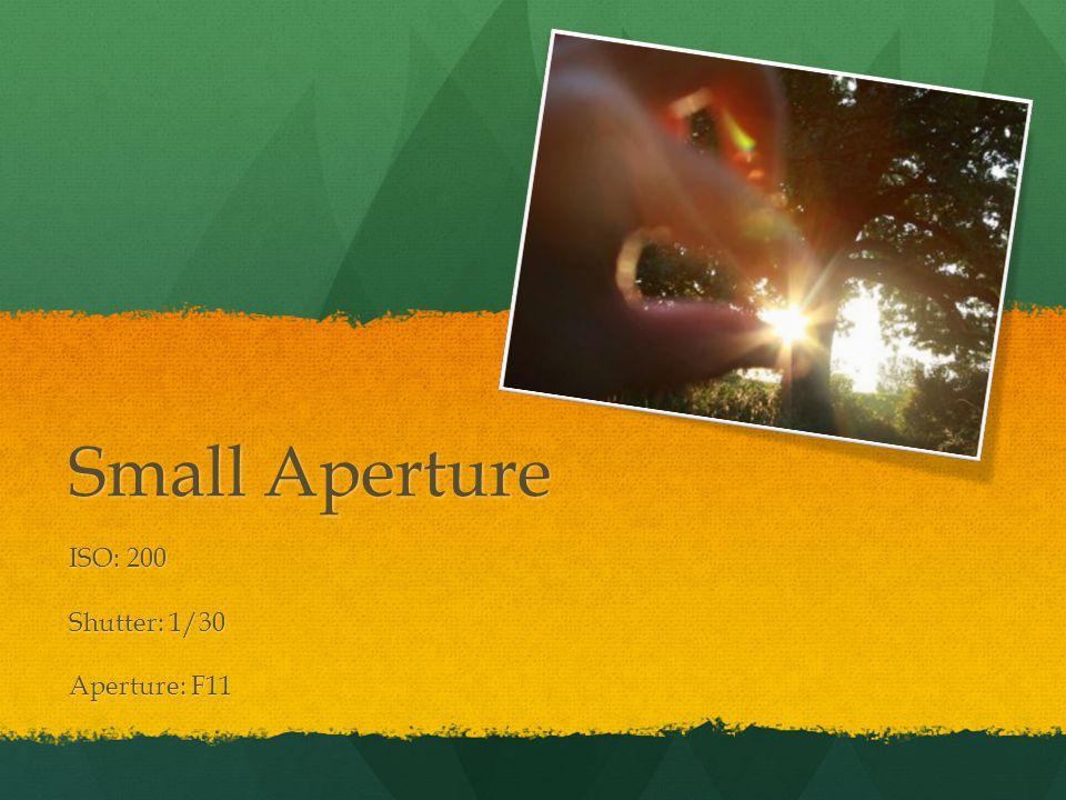 Small Aperture ISO: 200 Shutter: 1/30 Aperture: F11