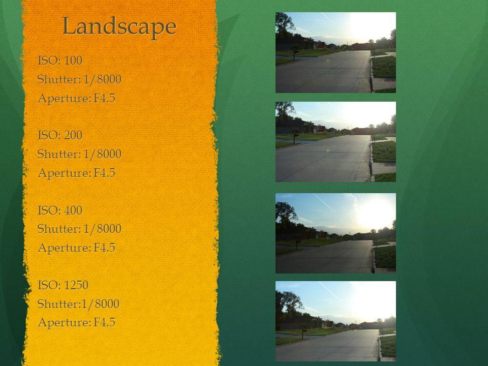 Landscape ISO: 100 Shutter: 1/8000 Aperture: F4.5 ISO: 200 Shutter: 1/8000 Aperture: F4.5 ISO: 400 Shutter: 1/8000 Aperture: F4.5 ISO: 1250 Shutter:1/8000 Aperture: F4.5