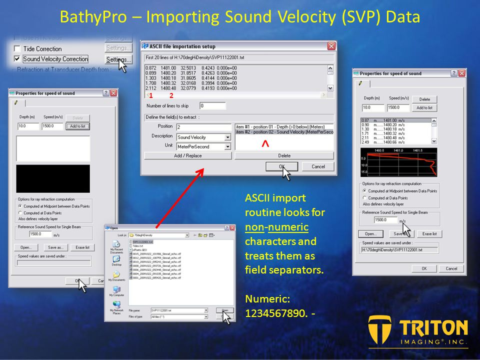 BathyPro – Importing Sound Velocity (SVP) Data ASCII import routine looks for non-numeric characters and treats them as field separators.