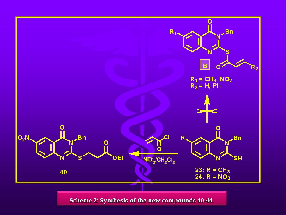 Scheme 2: Synthesis of the new compounds 40-44.