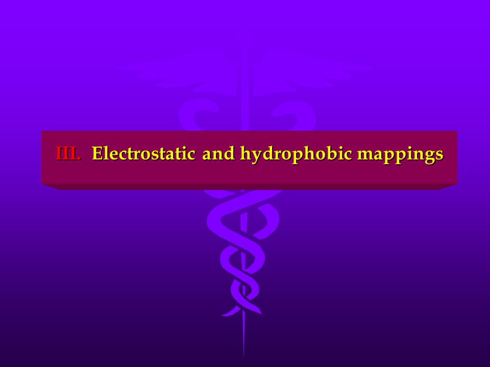 III. Electrostatic and hydrophobic mappings