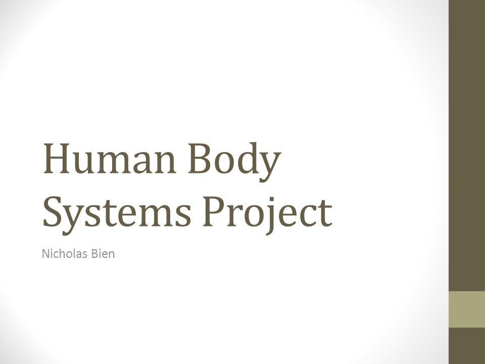 Human Body Systems Project Nicholas Bien