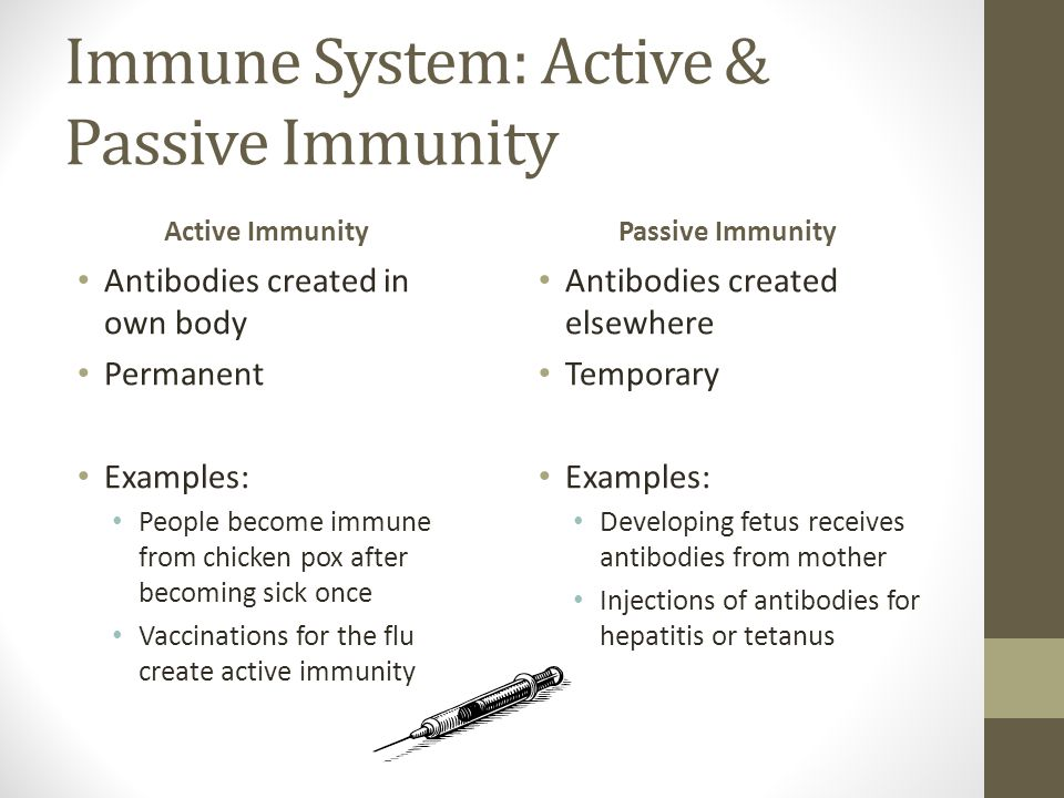 Immune System: Active & Passive Immunity Active Immunity Antibodies created in own body Permanent Examples: People become immune from chicken pox after becoming sick once Vaccinations for the flu create active immunity Passive Immunity Antibodies created elsewhere Temporary Examples: Developing fetus receives antibodies from mother Injections of antibodies for hepatitis or tetanus