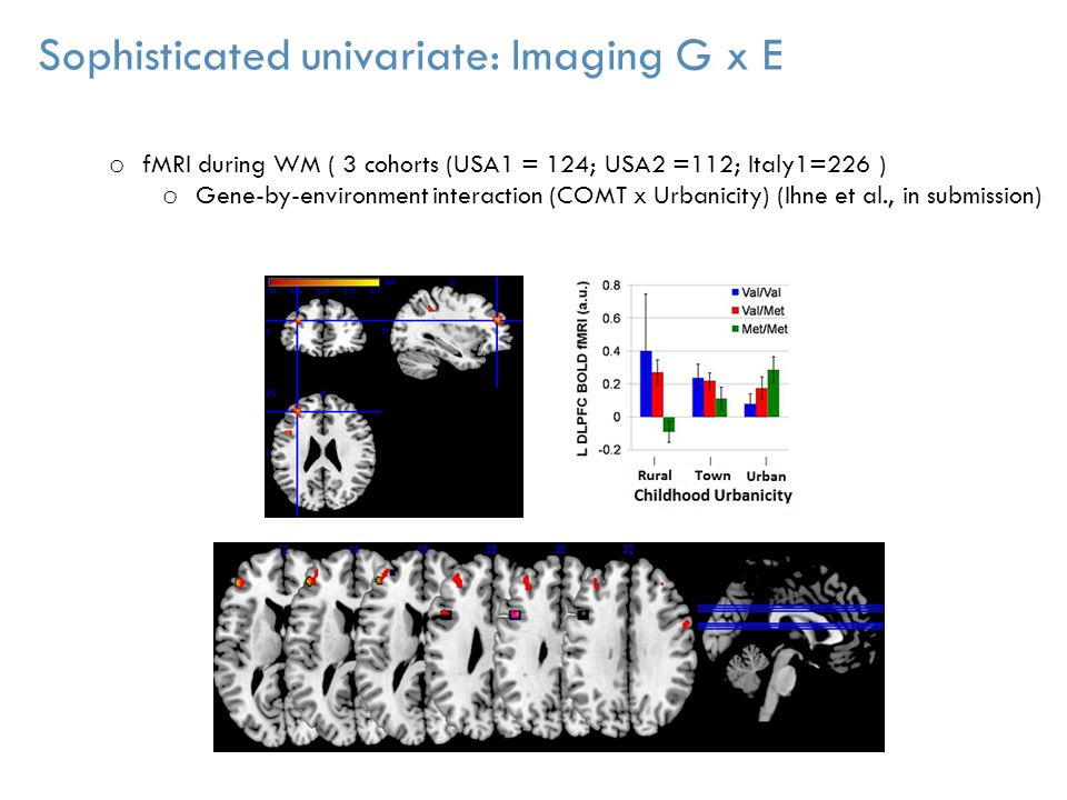 o fMRI during WM ( 3 cohorts (USA1 = 124; USA2 =112; Italy1=226 ) o Gene-by-environment interaction (COMT x Urbanicity) (Ihne et al., in submission) I