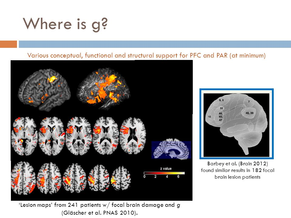 Where is g? 'Lesion maps' from 241 patients w/ focal brain damage and g (Gläscher et al. PNAS 2010). Barbey et al. (Brain 2012) found similar results