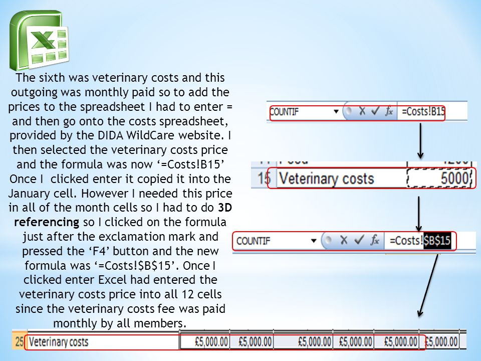 The sixth was veterinary costs and this outgoing was monthly paid so to add the prices to the spreadsheet I had to enter = and then go onto the costs spreadsheet, provided by the DIDA WildCare website.