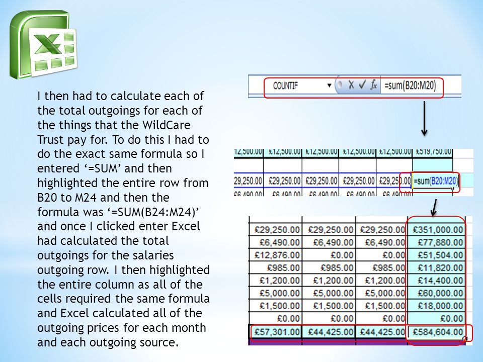 I then had to calculate each of the total outgoings for each of the things that the WildCare Trust pay for.