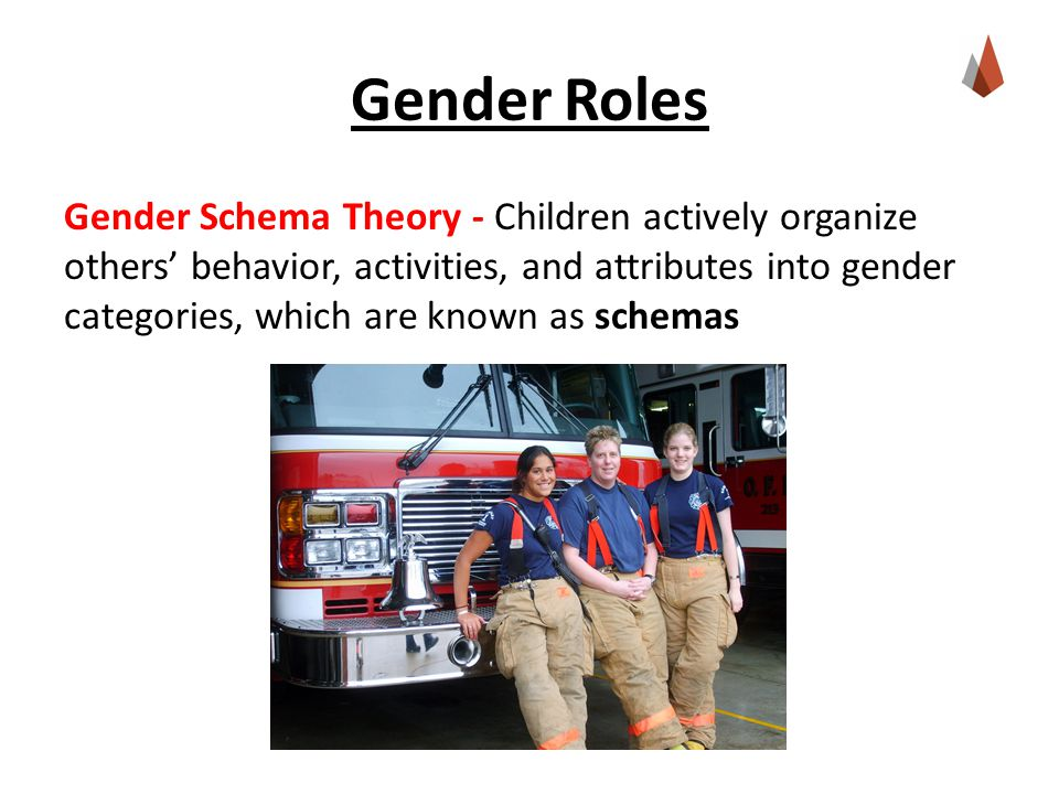 Gender Roles Gender Schema Theory - Children actively organize others' behavior, activities, and attributes into gender categories, which are known as schemas