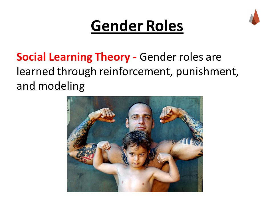 Gender Roles Social Learning Theory - Gender roles are learned through reinforcement, punishment, and modeling