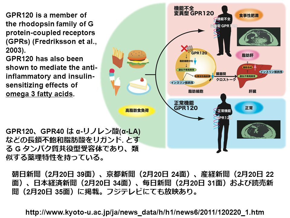 1 Department of Genomic Drug Discovery Science, Graduate School of Pharmaceutical Sciences, Kyoto University, 46-29 Yoshida Shimoadachi-cho, Sakyo-ku, Kyoto 606-8501, Japan.