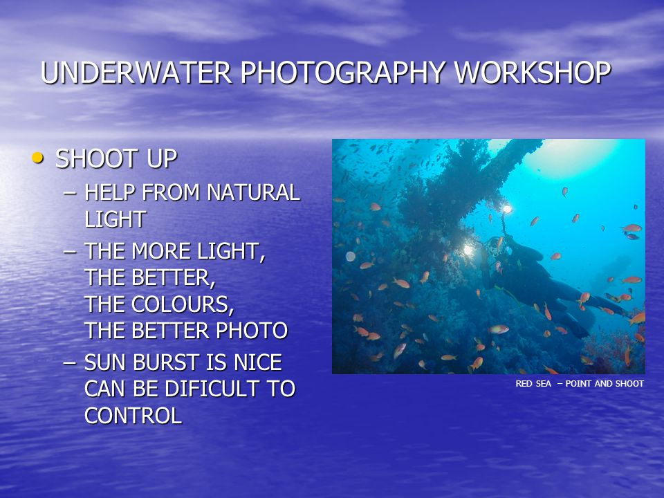 UNDERWATER PHOTOGRAPHY WORKSHOP SHOOT UP SHOOT UP –HELP FROM NATURAL LIGHT –THE MORE LIGHT, THE BETTER, THE COLOURS, THE BETTER PHOTO –SUN BURST IS NICE CAN BE DIFICULT TO CONTROL RED SEA – POINT AND SHOOT