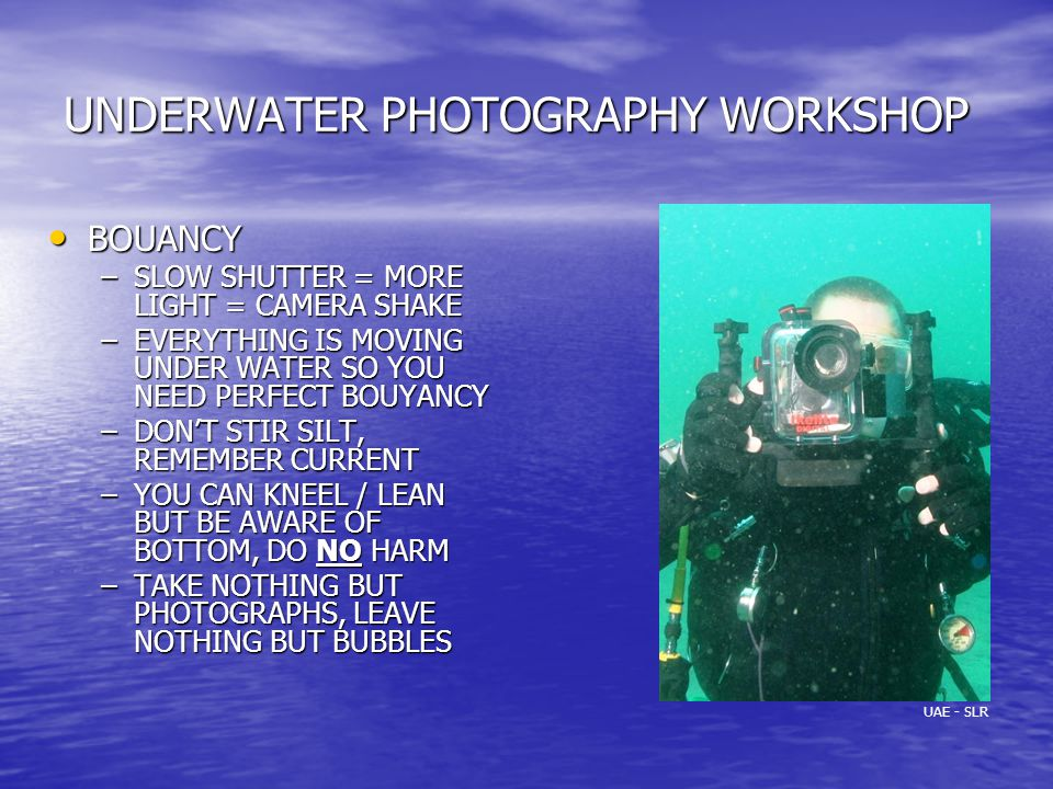 UNDERWATER PHOTOGRAPHY WORKSHOP BOUANCY BOUANCY –SLOW SHUTTER = MORE LIGHT = CAMERA SHAKE –EVERYTHING IS MOVING UNDER WATER SO YOU NEED PERFECT BOUYANCY –DON'T STIR SILT, REMEMBER CURRENT –YOU CAN KNEEL / LEAN BUT BE AWARE OF BOTTOM, DO NO HARM –TAKE NOTHING BUT PHOTOGRAPHS, LEAVE NOTHING BUT BUBBLES UAE - SLR