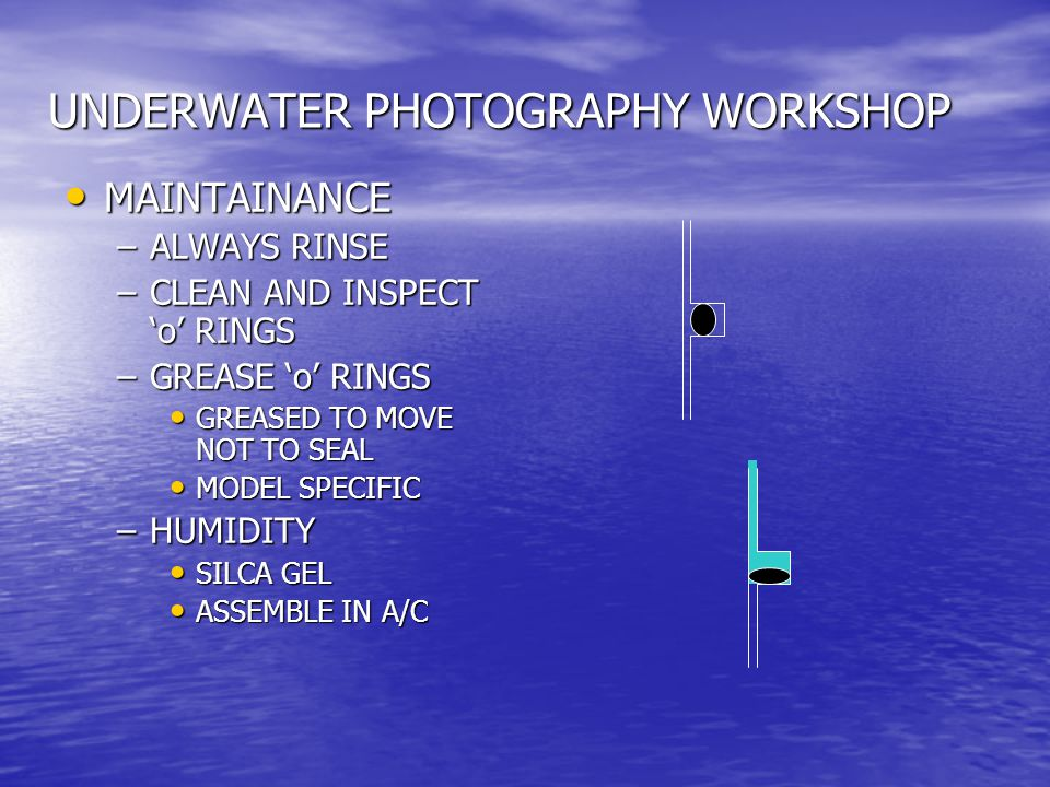 UNDERWATER PHOTOGRAPHY WORKSHOP MAINTAINANCE MAINTAINANCE –ALWAYS RINSE –CLEAN AND INSPECT 'o' RINGS –GREASE 'o' RINGS GREASED TO MOVE NOT TO SEAL GREASED TO MOVE NOT TO SEAL MODEL SPECIFIC MODEL SPECIFIC –HUMIDITY SILCA GEL SILCA GEL ASSEMBLE IN A/C ASSEMBLE IN A/C
