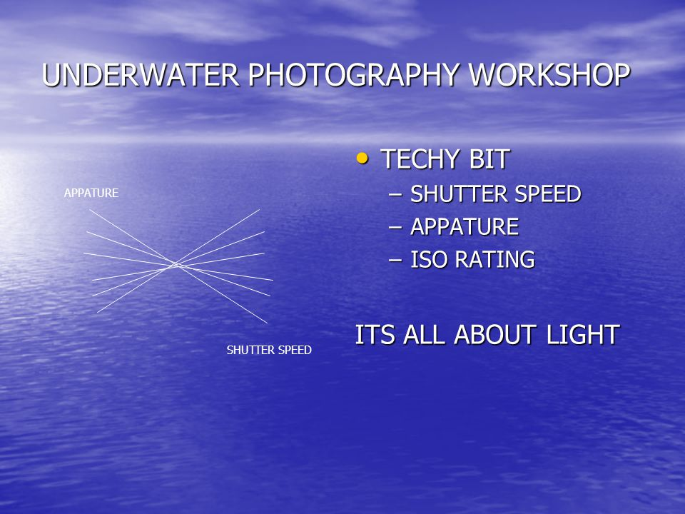 UNDERWATER PHOTOGRAPHY WORKSHOP TECHY BIT TECHY BIT –SHUTTER SPEED –APPATURE –ISO RATING ITS ALL ABOUT LIGHT APPATURE SHUTTER SPEED