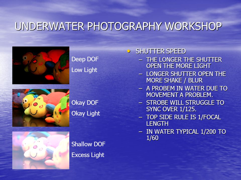 UNDERWATER PHOTOGRAPHY WORKSHOP SHUTTER SPEED SHUTTER SPEED –THE LONGER THE SHUTTER OPEN THE MORE LIGHT –LONGER SHUTTER OPEN THE MORE SHAKE / BLUR –A PROBEM IN WATER DUE TO MOVEMENT A PROBLEM.