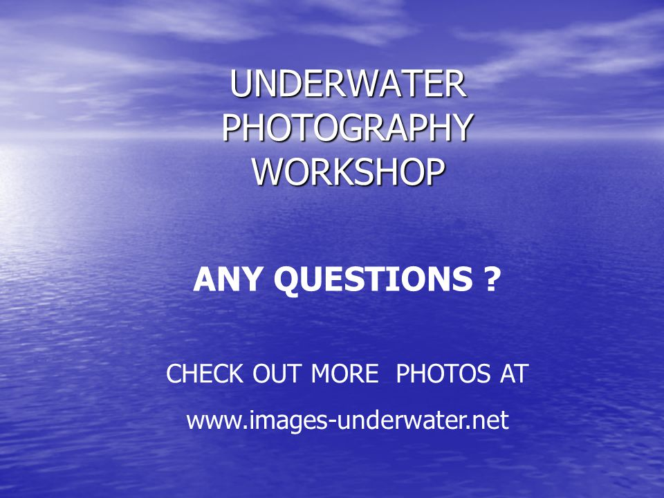 UNDERWATER PHOTOGRAPHY WORKSHOP ANY QUESTIONS CHECK OUT MORE PHOTOS AT www.images-underwater.net