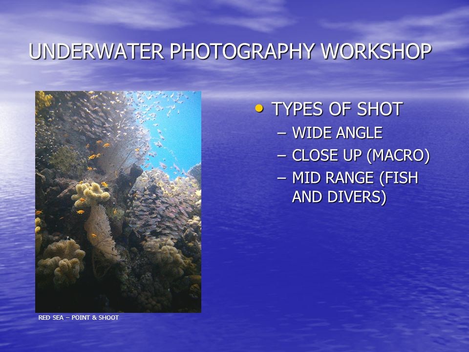 UNDERWATER PHOTOGRAPHY WORKSHOP TYPES OF SHOT TYPES OF SHOT –WIDE ANGLE –CLOSE UP (MACRO) –MID RANGE (FISH AND DIVERS) RED SEA – POINT & SHOOT